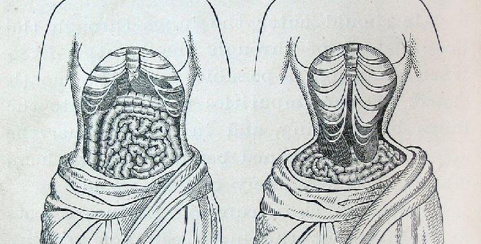 port du corset pour maigrir le r gime corset fashion mood. Black Bedroom Furniture Sets. Home Design Ideas
