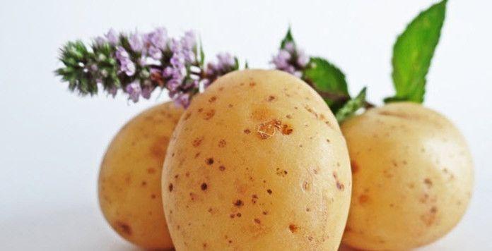 R gime manger des pommes de terre pour maigrir - Quand ramasser les pommes de terre ...